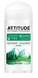 Attitude Source Deodorant (for women)