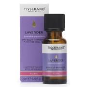 Tisserand Lavender Ethically Harvested Essential Oil 20ml