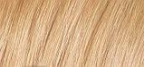 Naturtint Permanent Natural Hair Colour - 9.31 Sandy Blonde