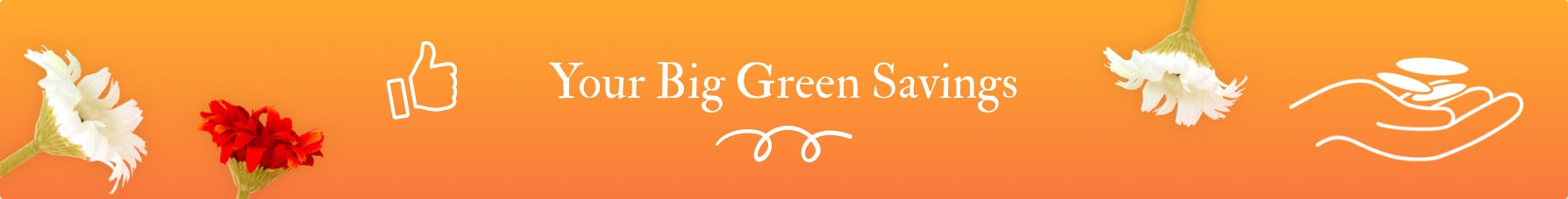 Big Green Smile Savings Loyalty Program