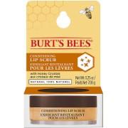 Burt´s Bees Conditioning Lip Scrub