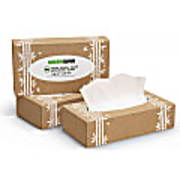 Greencane Paper 2 Ply Facial Tissues - 90 sheets.
